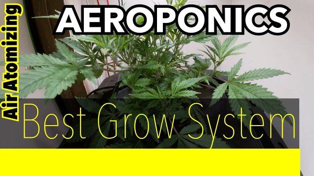 Aeroponic Cannabis  ( Fastest Grow System )