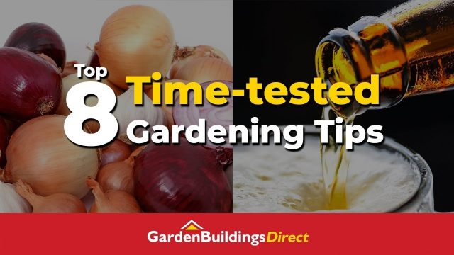 Top 8 Time-tested Gardening Tips – Old-school Gardening Hacks That Save You Money