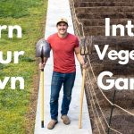 How To Turn Your Lawn Into A Vegetable Garden