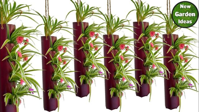 hanging pots//vertical garden pots//indoor wall garden//indoor vertical garden