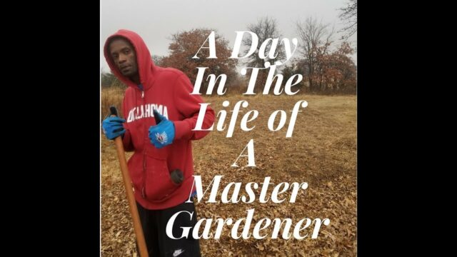 A DAY IN THE LIFE OF A MASTER GARDENER…..
