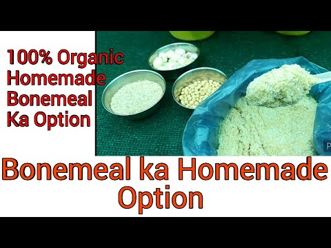 Substitute of Bonemeal Homemade Organic Option Bonemeal ka fertilizer rich in phosphorous calcium