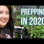 NATURE THERAPY| UK Food Security | Health benefits of gardening| Reasons to take up gardening 2020