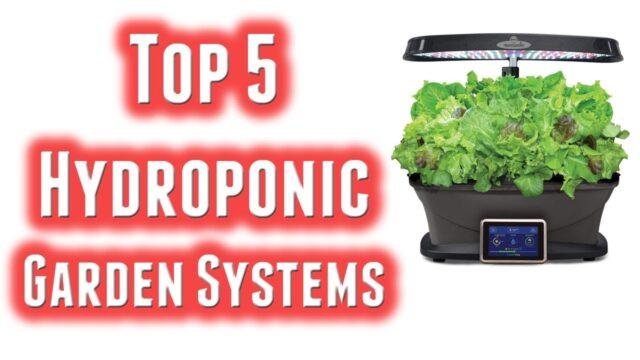 Best Hydroponic Garden Systems 2020