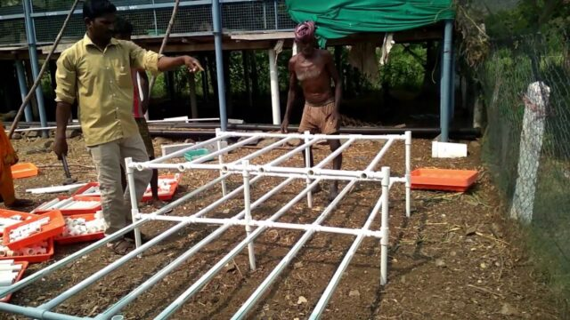 how to set up hydroponics step by step