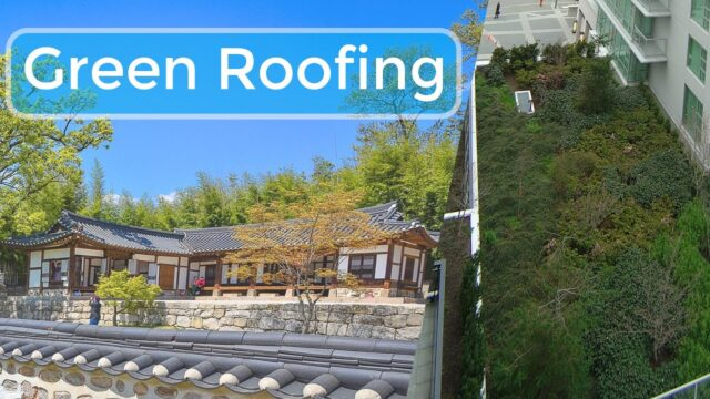 Benefits of Green Roofing – What are The Advantages and Disadvantages of a Green Roof? Gardening