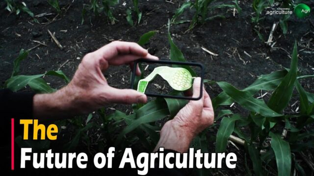 THE FUTURE OF AGRICULTURE – Documentary