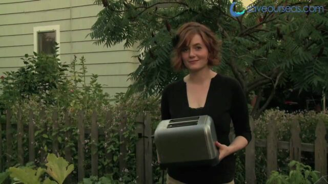Toaster Gardening, with Kids and Sharks