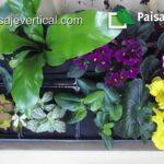02.- Crea tu Jardín Vertical. Plantación del módulo Naturpanel®