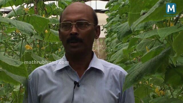Hi-Tech Farming in Kerala