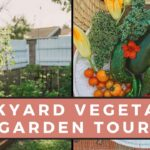 Backyard Vegetable Garden Tour | Gardening Tips