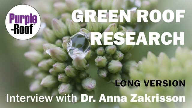Green Roof Detention and Retention Research Interview with Dr. Anna Zakrisson (long)