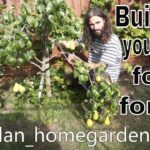 Backyard food forest permaculture home orchard expansion!