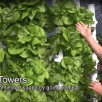 Gro Pocket system  How to build a Grow Tower from Pocket Pockets.