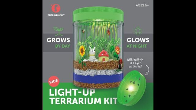 Mini Explorer Light-up Terrarium Kit Kids LED Light on Lid  Create Your Own