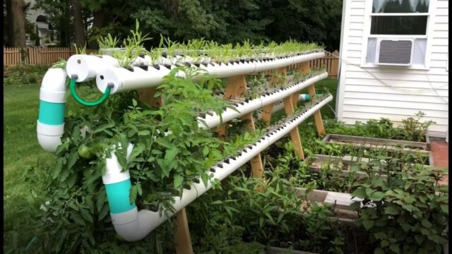 FnF37 – Home 016 – Vertical Hydroponic Garden Ideas
