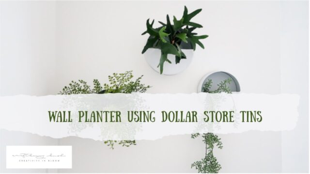 Wall planter using Dollar Store cookie tin