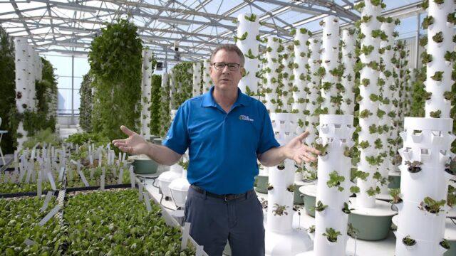 Commercial Farming with Tower Gardens | True Garden