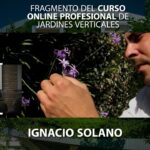 Curso Online Jardines Verticales. Píldora 6: Tecnología del jardín vertical