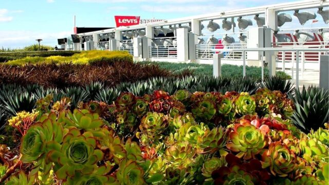 Levi's Stadium – Featured Project Replay