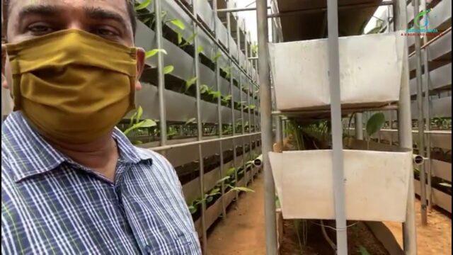 Hi Tech Vertical Farming