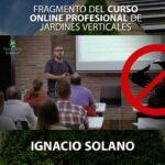 Curso Online Jardines Verticales. Píldora 14: Mantenimiento del jardín vertical