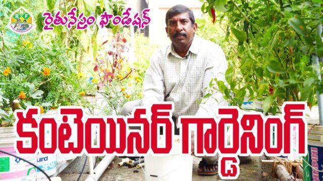 Container Gardening || Bucket Gardening | Rythu Nestham |Roof Gardening