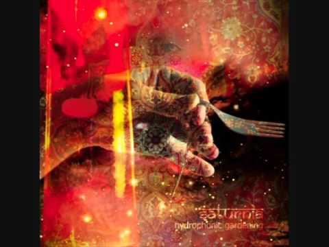 Saturnia – Hydrophonic Gardening (ALBUM STREAM)
