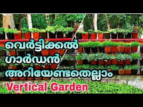 Vertical Garden /  How To Make A Vertical Garden / വെർട്ടിക്കൽ ഗാർഡൻ എങ്ങനെയുണ്ടാക്കാം / Malayalam