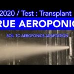 From Soil To High Pressure Aeroponics ( Air Atomizing )