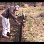 Fencing a Vegetable Garden