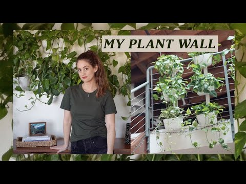 My Plant Wall! Recycled Vertical Garden | Alli Cherry