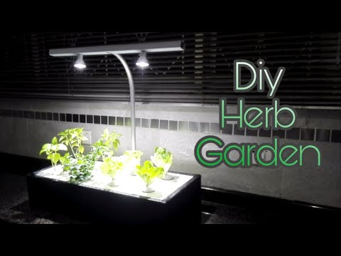 Indoor Hydroponic Garden