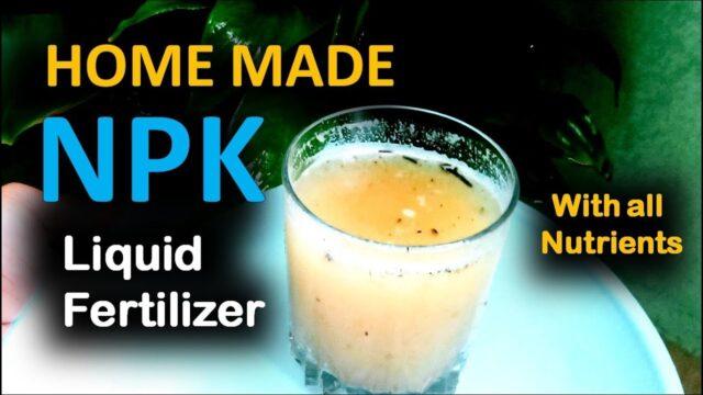 how to make organic npk liquid fertilizer at home