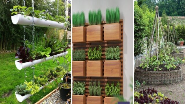 Amazing Vertical Gardening Ideas | diy garden