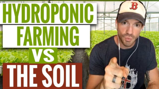 Is Hydroponic Farming Safe? | Hydroponic vs Soil | Hydroponic Nutrients