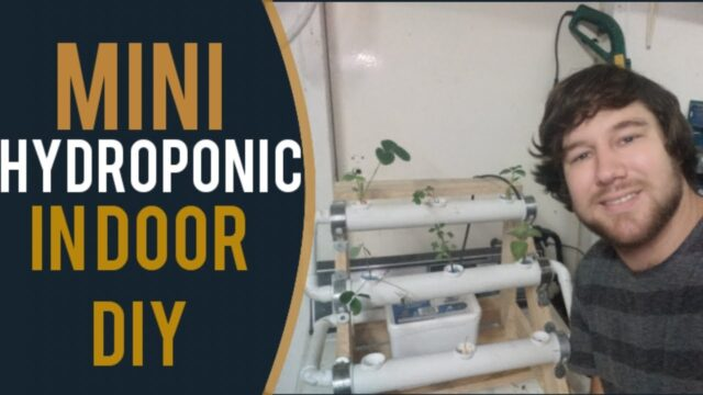 Hydroponics – Grow your herbs indoor, NFT system