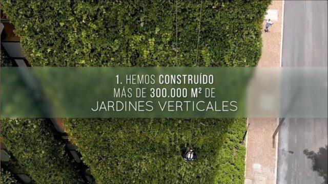Curso de Jardines Verticales – 10 Razones para realizarlo