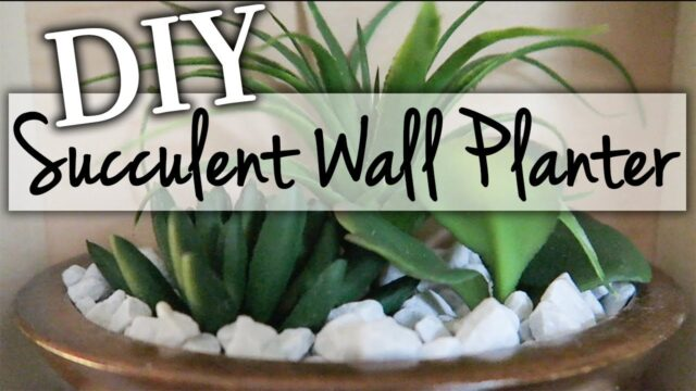 DIY Wall Planter ~ Relaxing Succulent Garden DIY ~ $5 Goodwill Challenge