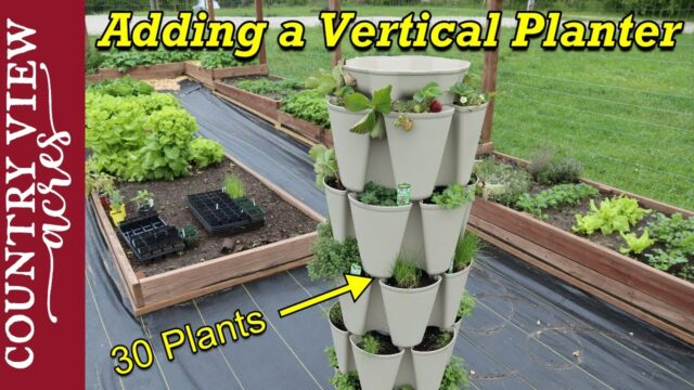 Adding Vertical Planting Space to the Garden.  Greenstalk vertical planter.