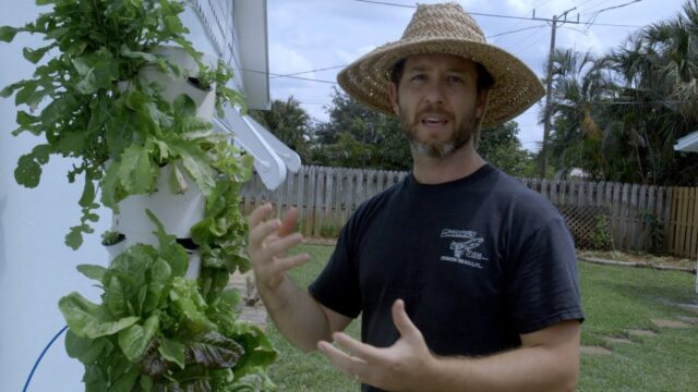 Growing Lettuce in South Florida with the Tower Garden | Doctor of the Future 003