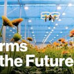 The Futuristic Farms That Will Feed the World   Freethink   Future of Food