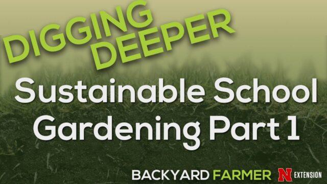 Sustainable School Gardening Part 1