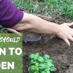 Learn to Garden this Year!
