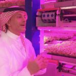 Inside the futuristic indoor farm that could revolutionize agriculture in the UAE   The Edge