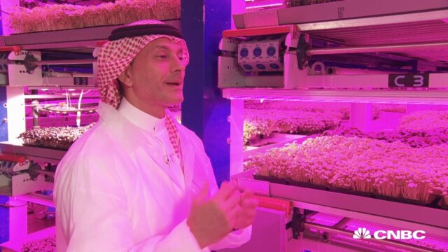 Inside the futuristic indoor farm that could revolutionize agriculture in the UAE | The Edge
