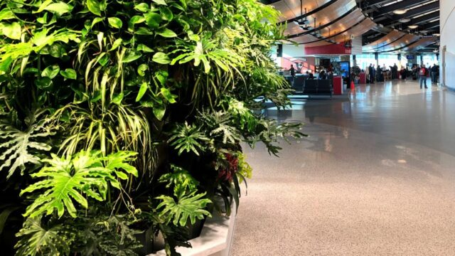 Appleton International Airport (ATW) Living Wall – Featured Project