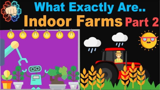 What Are Indoor Farms: The Future of Farming