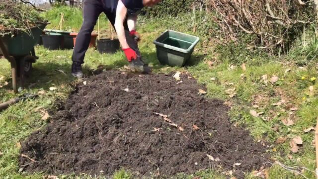 Starting a new Vegetable Garden – Ep01