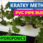 Setup your own Kratky Hydroponic System using PVC pipe